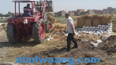 صورة زراعة الفيوم تواصل تنفيذحملات لإزالة كافة التعديات على الأراضى الزراعية في مهدها