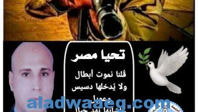 صورة تحيا مصر