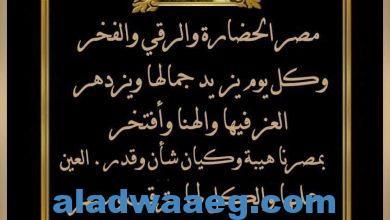 صورة مصر كيان عظيم وفعلها سابق الكلام