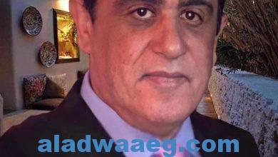 صورة مهنه المحاماه في مصر