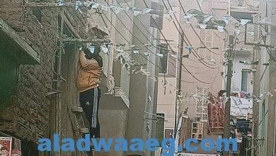 صورة شباب الفيوم تطلق مبادرة الزم بيتك كل سنة وانته طبب وتزيين الشوارع والاحياء الشعبية