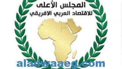 صورة تدشين المجلس الأعلى للإقتصاد العربي الإفريقي وسط تفاؤل