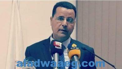 صورة اعلامي ليبي مصر هي السند الحقيقي لليبيا