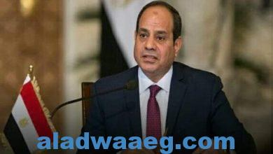 صورة الرئيس عبد الفتاح السيسي يوجهه بدعم الأشقاء الليبين