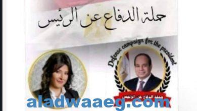 صورة الخولي تقود حملة الدفاع عن الرئيس