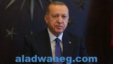 صورة أردوغان: سنواصل المضي قدما لتركيا أقوى في المستقبل