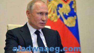 صورة بوتين: العلاقات بين روسيا وجنوب إفريقيا على مستوى عال