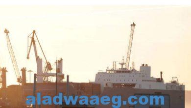 صورة أنباء عن تعرض سفينة لهجوم بالبحر الأحمر قبالة ساحل ميناء ينبع في السعودية