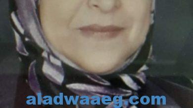 صورة امين عام المراة بالصقور المصرية: المرأة المصرية تساند بلادها ضد الإرهاب بعزيمة لا تلين