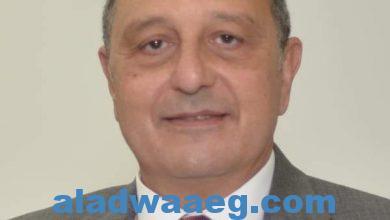 صورة الطيار عمرو أبو العينين قائم بأعمال رئيس الشركة القابضة لمصر للطيران