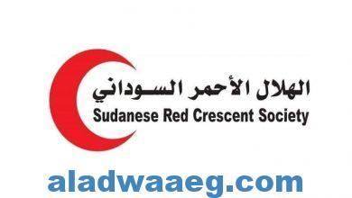 صورة بيان من الهلال الأحمر السوداني ينفي رفع لافته باسمه بالابيض