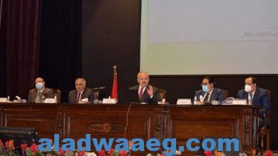 صورة جامعة القاهرة:دبلوم متعدد التخصصات في إطار الجيل الرابع للجامعات