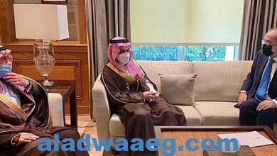 صورة وزير الخارجية يستقبل نظيره السعودي