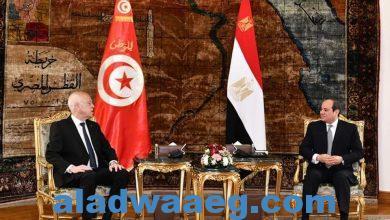 صورة الرئيس التونسي في ضيافة الرئيس عبدالفتاح السيسي