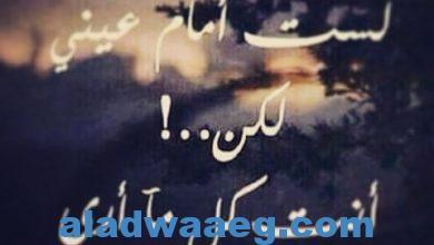 صورة انتظار .. الشاعر شاكر محمد المدهون
