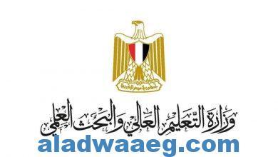 صورة التعليم العالي: رفع درجة الاستعداد القصوى بالمستشفيات الجامعية فى شم النسيم