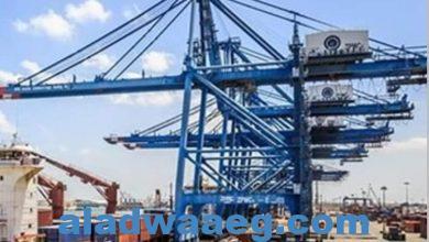 صورة تداول 27 سفينة و2964 شاحنة بميناء دمياط