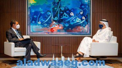 """صورة عبدالله بن زايد يستقبل مدير عام """"آيرينا"""