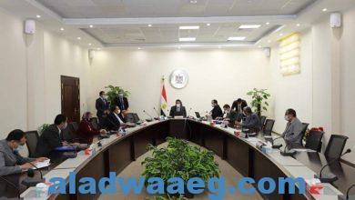 صورة وزير التعليم العالي يرأس اجتماع مجلس صندوق الاستشارات والدراسات والبحوث الفنية