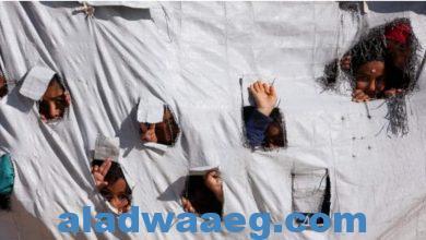 صورة روسيا تدعو لإنقاذ أطفال مخيم الهول في سوريا