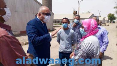صورة محافظ قنا يتفقد مشروعات الأمن الغذائي بالمعنا