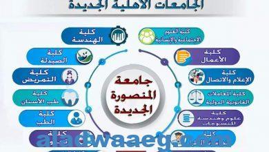صورة وزير التعليم العالي يستعرض تقريرًا حول الجامعات الأهلية الدولية