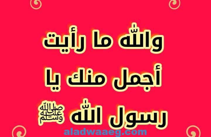 والله ما رأيت أجمل منك يا رسول الله ﷺ