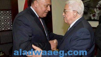 صورة مصر، دور فعّال وريادي في القضية الفلسطينيّة