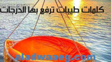 صورة كلمات طيبات ترفع بها الدرجات ..بقلم أيمن عبد العزيز
