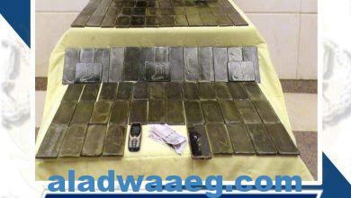 صورة جهود وزارة الداخليه فى ضبط عنصرين من العناصر الإجرامية
