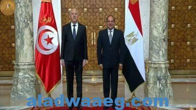 صورة الرئيس السيسي وبن سعيد ونهاية التنظيم الدولي للإخوان