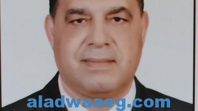 صورة كلمتي إلي قائد مصر وزعيمها
