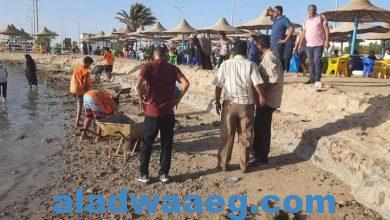 صورة الشعب الجمهوري وجمعية فتيان الكشافة حملات تطهير الشواطئ من الصخور والمخالفات