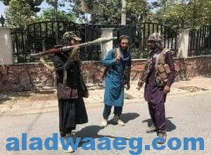 صورة كابل سقطت بسهولة في يد حركة طالبان والفوضى بعد انسحابنا من أفغانستان كانت حتمية