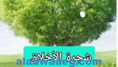 صورة شجرة الأخلاق في كنوز الأرزاق ،،،