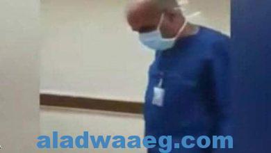 صورة النائب العام يأمر بالتحقيق فى واقعة الممرض والكلب،،