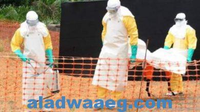 صورة دراسة تكتشف أن فيروس إيبولا الفتاك يكمن متخفيا لدى الناجين 5 سنوات،،،،