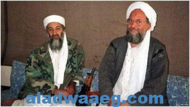صورة طالبان عادت الى كابل، فهل ستعود القاعدة؟.،،،