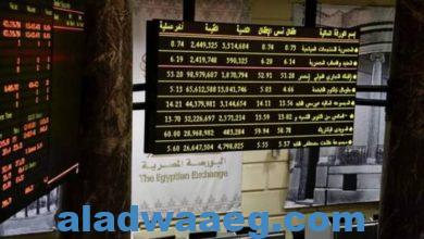 صورة خبير: مصر ستستفيد من انخفاض تكاليف الاقتراض عند إصدار السندات