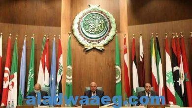 صورة وزير الخارجية يلقي كلمة مصر أمام الدورة العادية 155 لمجلس جامعة الدول العربية
