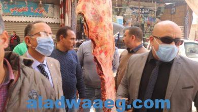صورة تحرير 66 مخالفة تموينية ، خلال حملات رقابية بمركز ملوي بالمنيا