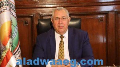 صورة وزير الزراعة تسهيل إجراءات تصدير البطاطس وتشغيل معامل العفن البني 24 ساعة طوال أيام الأسبوع
