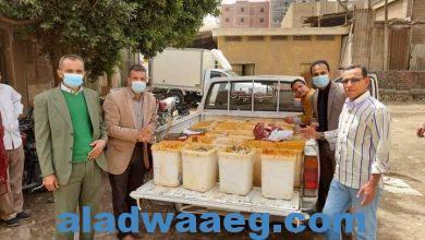 صورة …….. الشبح ورجال حماية المستهلك يضبطون نصف طن ملوحة فاسدة بسوق الاثنين بسوهاج