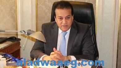 صورة وزير التعليم العالي يصدر قرارًا بإغلاق 3 كيانات وهمية بالإسكندرية