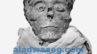 صورة تحت رعايه السيد رئيس الجمهورية  موكب ملوك مصر بمتحف الحضاره