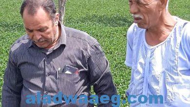 صورة وكيل وزارة الزراعة بالفيوم يشدد على الاهتمام بالنباتات الطبية والعطرية