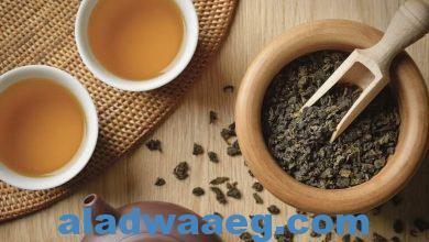 """صورة الشاي الأخضر قد يكون علاجا """"سحريا"""" لمرض لا دواء له بعد اكتشاف مركب به"""