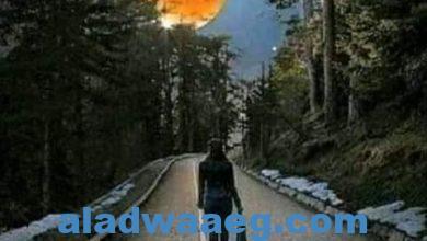 صورة ياقمري