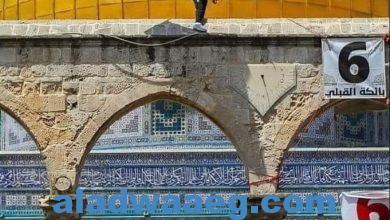 صورة اسباب اندلاع المواجهات بحي الشيخ جراح  طبيب صلاح الدين الايوبي