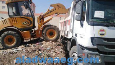 صورة جهود الوحدة المحلية لمركز ومدينة الفشن